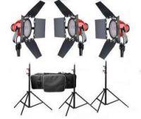 Hercules 800 Watts Halogen Light Kit